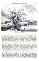 Página 647