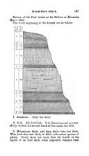 Página 185